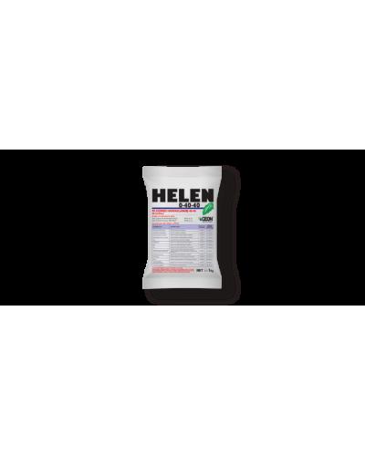 Helen 95 PS  0-40-40